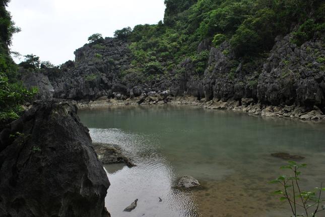 Pequeña laguna de agua dulce al centro de la isla